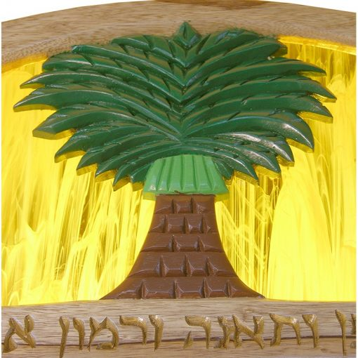 Seven Species Torah Ark carved ner tamid with glass