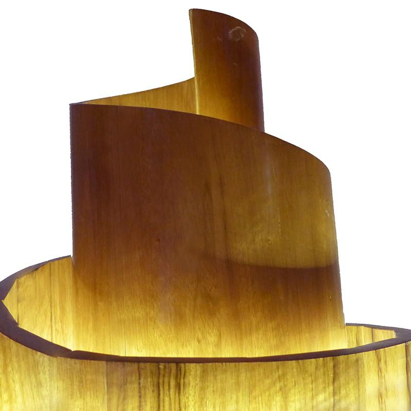 aron kodesh scroll with light